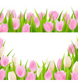 spring pink borders set vector image