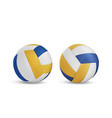 volleyball balls set isolated on white background vector image vector image