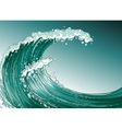 A high wave at the sea vector image vector image