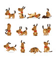 cartoon dog set dogs tricks and action digging vector image
