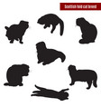 cat black silhouettes on white vector image vector image