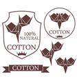 Cotton vector image vector image