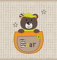 cute bear in pocket vector image