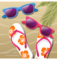 flip- flops in the sand sun glasses and palm vector image