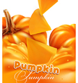 orange background with slices of pumpkin vector image vector image