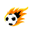 Two Soccer Balls vector image vector image