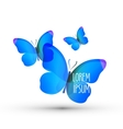 butterfly logo design template insect or nature vector image vector image