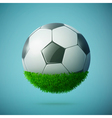 grass sphere with soccer ball vector image