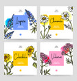 hand drawn sketch watercolor wildflowers vector image vector image