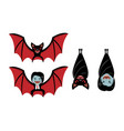 vampire bat and dracula on white cartoon vector image vector image