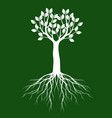 white tree with leaves on green background vector image vector image