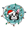 cute pug dog in santa hat with christmas lights vector image