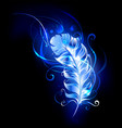 feather of blue fire vector image vector image