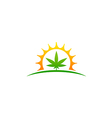 marijuana leaf cannabis medicine logo vector image
