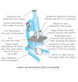 Microscope vector image