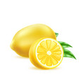 realistic yellow lemon fruit with leaf vector image vector image