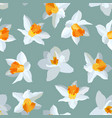 seamless pattern of narcissus vector image vector image