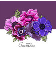 botanical greeting card or square wedding vector image