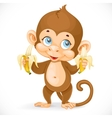 Cute baby monkey with two bananas stand on a white vector image vector image