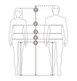 man and women sizes measurements vector image