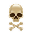 pirate skull and crossbones without hat 3d sign vector image