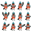 Set of Bullfinches with hats flat icons vector image vector image