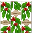 Set of banners with coffee branch and beans vector image