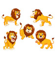 collection of the lions with different posing vector image