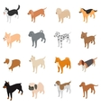 Dog icons set isometric 3d style vector image vector image