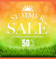 summer sale banner with grass border vector image vector image