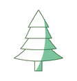 tree pine isolated vector image vector image