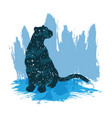 a night sky leopard print vector image