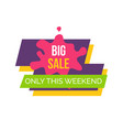 big sale this weekend sticker vector image vector image