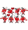 eight tomato vector image vector image