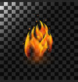 fire flame element vector image