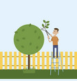 man in the garden cuts wood vector image vector image