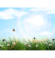 Nature background of Beautiful vector image vector image