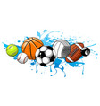 sport balls on water background vector image