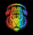 tiger headphone colorful vector image vector image