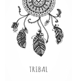 Tribal dream catcher with feathers vector image