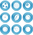 sports balls icon vector image