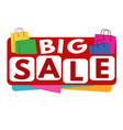 big sale banner or label vector image vector image
