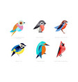 colorful stylized birds collection lilac breasted vector image vector image
