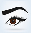 female eye and eyebrow sexy eyes simple modern vector image vector image