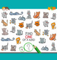 find one of a kind with cat animal character vector image vector image
