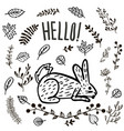 hand drawn cute hare or rabbit vector image