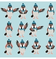 Sparrow with hats flat set vector image vector image