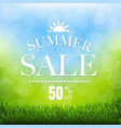 summer sale poster with grass border vector image vector image