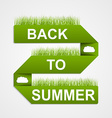 Back to Summer on green paper ribbon vector image