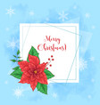 cute christmas card with poinsettia wreath and vector image vector image